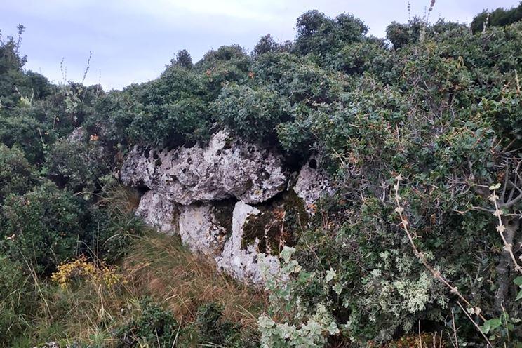 north wall–photo Amfitreidis (2019)