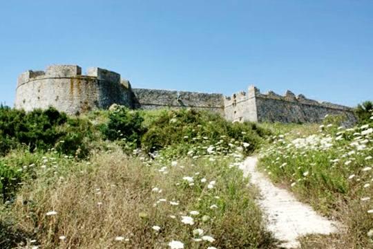 Κάστρο Πλαγιάς